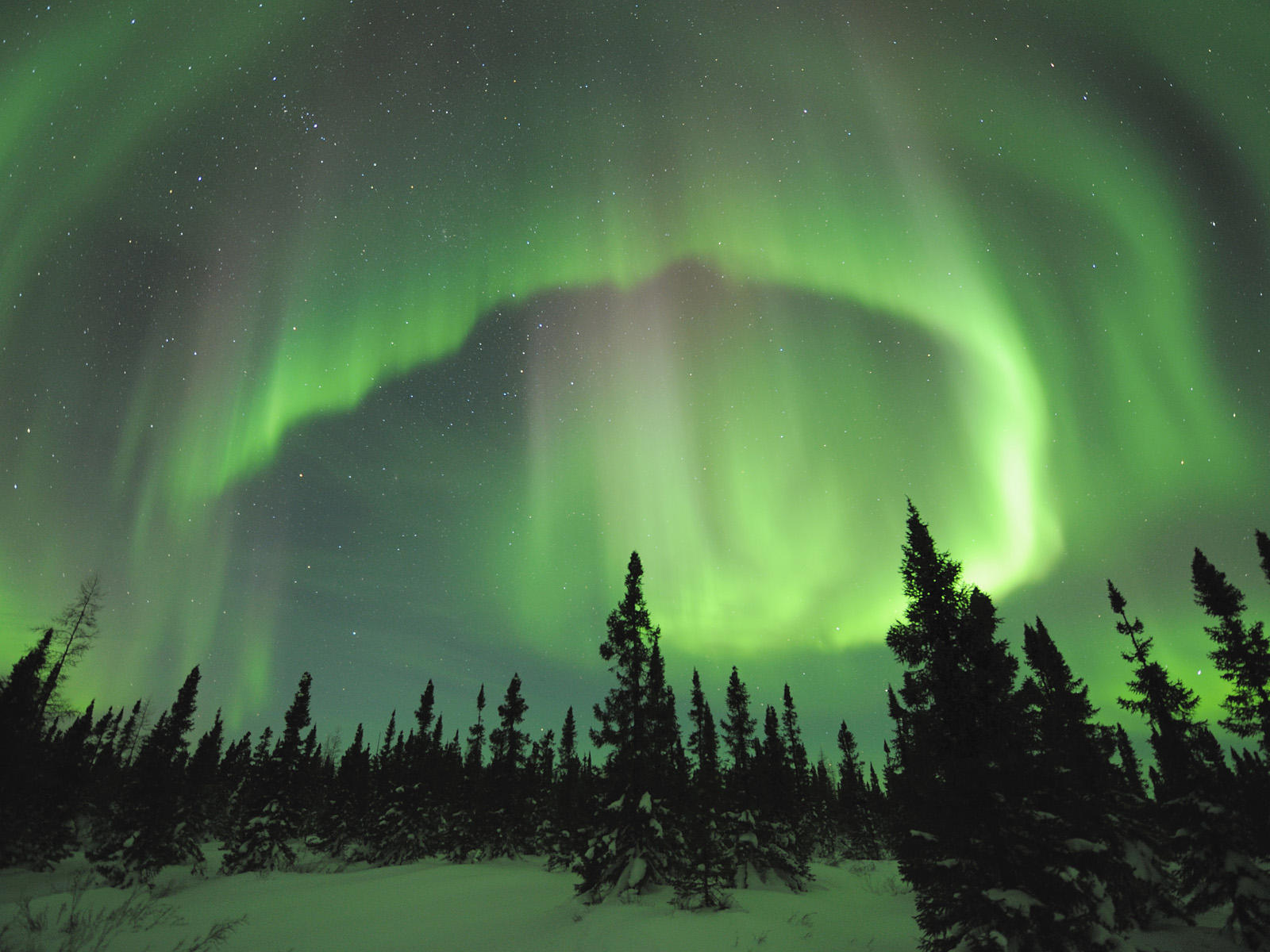 Aurora Borealis in Manitoba - These are a few of my favorite things