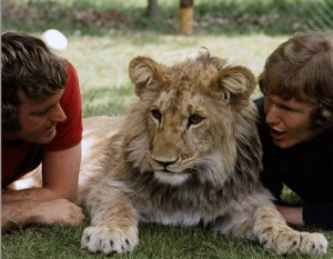 "John Rendall and Anthoney ""Ace"" Bourke with Christian the Lion"
